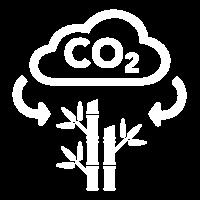 45 CO2 w 200